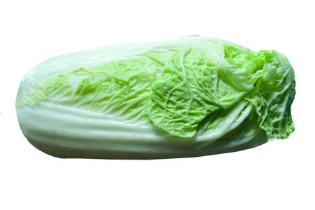 Nappa cabbage isolate on white background with clipping path