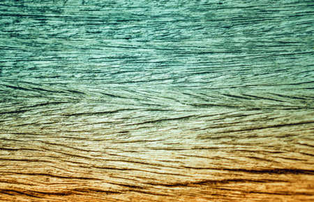 brown and green wood   color  pattern nature wallpaper  background