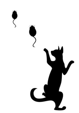 which: The silhouette of a black cat which hunts on mice Stock Photo