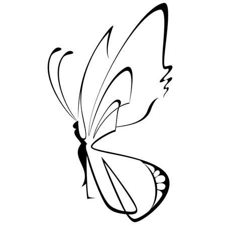 Beautiful papillons tropicaux