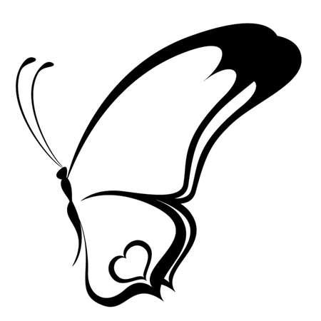 farfalla nera: Bella farfalla tropicale