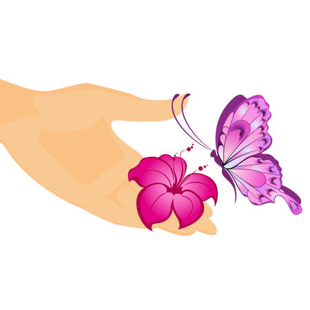 The beautiful butterfly sits down on a mans hand Vector