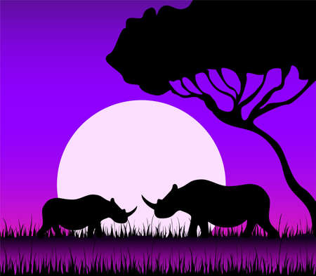 Silhouettes of a rhinoceros against a decline in a safari Stock Photo - 5512130