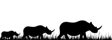 Silhouettes of a rhinoceros against a decline in a safari photo