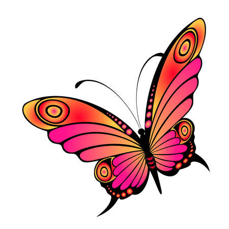 beautiful tropical butterfly Stock Vector - 5578001