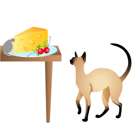 The cat watches the mouse which eats cheese on a table