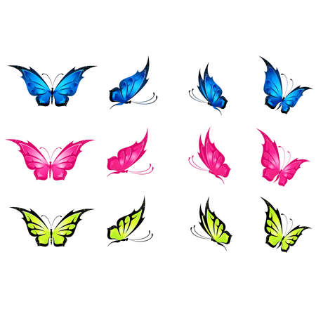 protection line:  beautiful tropical butterfly Illustration