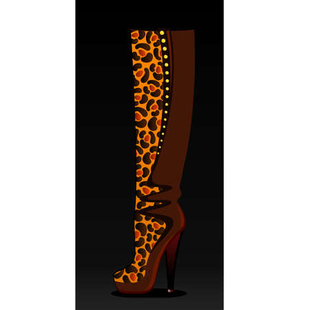 seductive: beautiful female boots on a high heel on a bright background for a design