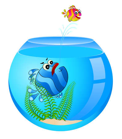 little colorful tropical fish in aquarium Stock Photo - 6457012