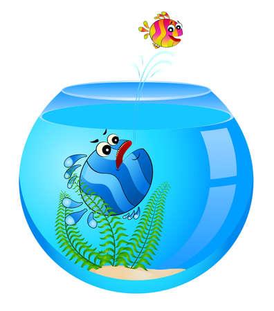 little colorful tropical fish in aquarium Stock Photo - 6457012