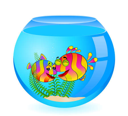 little colorful tropical fish in aquarium Stock Photo - 6457032