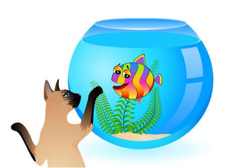 cartoon cat with little colorful tropical fish in aquarium Stock Photo - 6457075