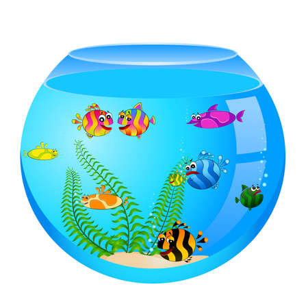 little colorful tropical fish in aquarium Vector