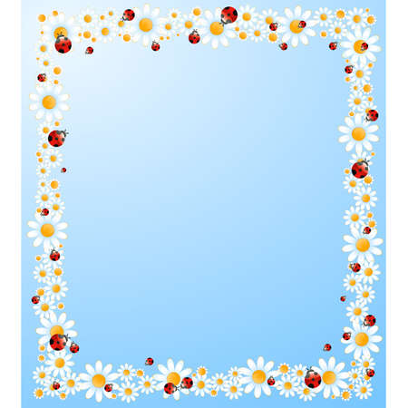 camomile:  background with beautiful camomil