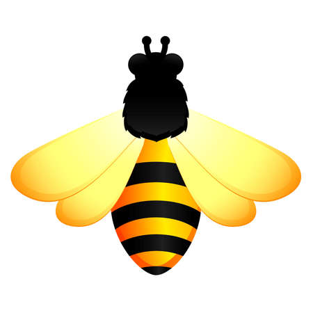 background with funny bee Vector