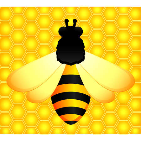 mead: Funny bee and honeycombs