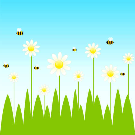 Funny bee and camomile Vector