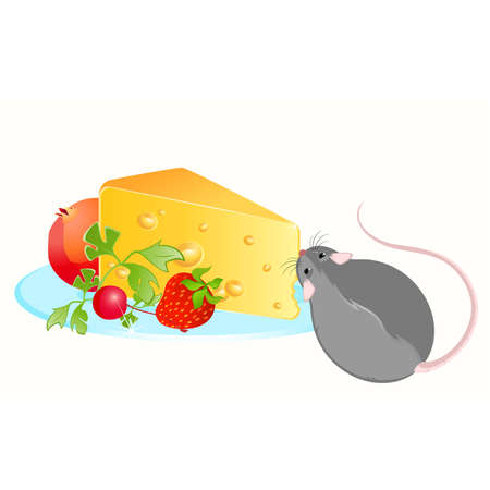 devanear: Funny rat and cheese