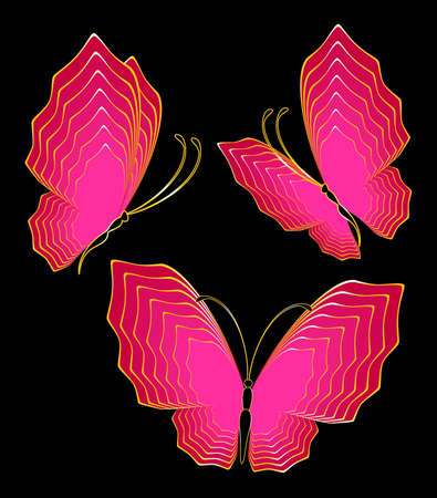 Abstract background with tropical butterflies. photo