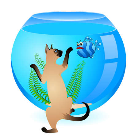 cat with little colorful tropical fish in aquarium Stock Vector - 7145264