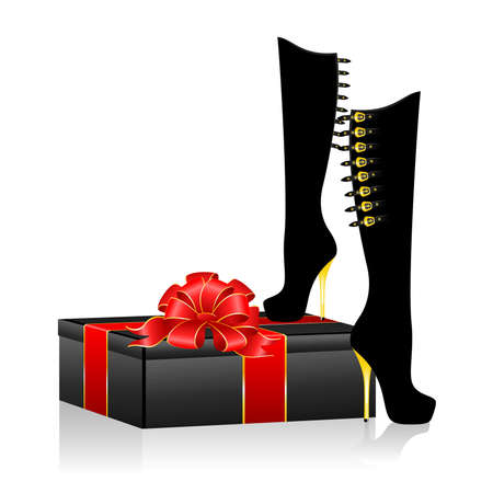 Beautiful female shoes against for design