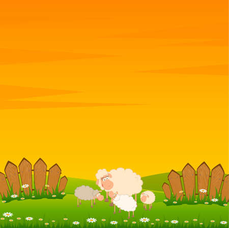 fun grass: family of cartoon sheep  Stock Photo