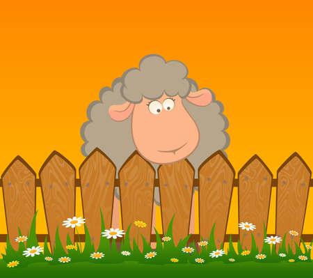granja caricatura: Dibujo animado de ovejas sonrientes despu�s de una valla  Foto de archivo