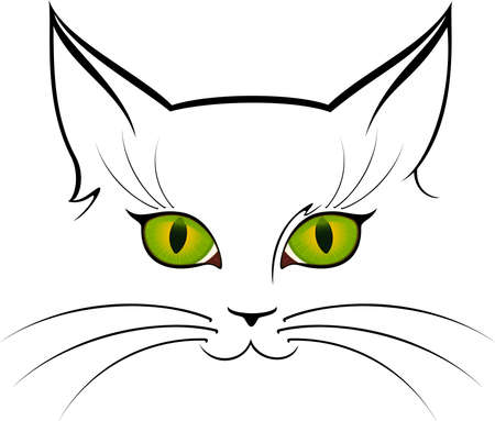 image of  cat eyes. photo
