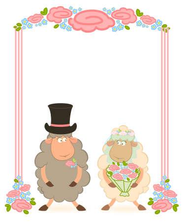 sheep bridegroom and bride  photo