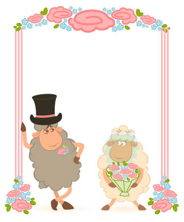 sheep bridegroom and bride  photo