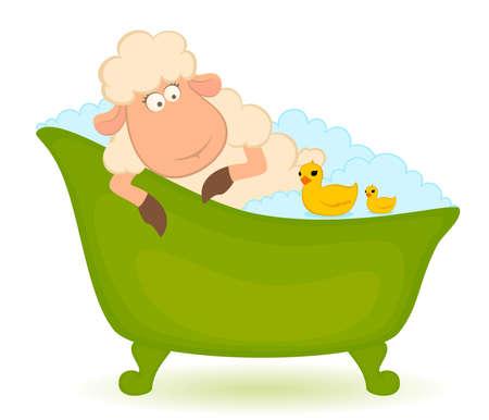 Cartoon sheep in bath  photo