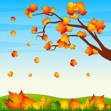 Background with autumnal tree with leaves photo