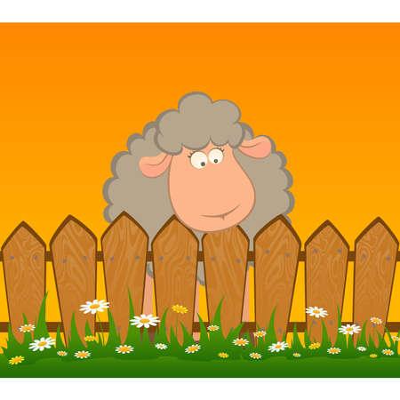 Cartoon lächelnd Schafe nachdem ein Zaun