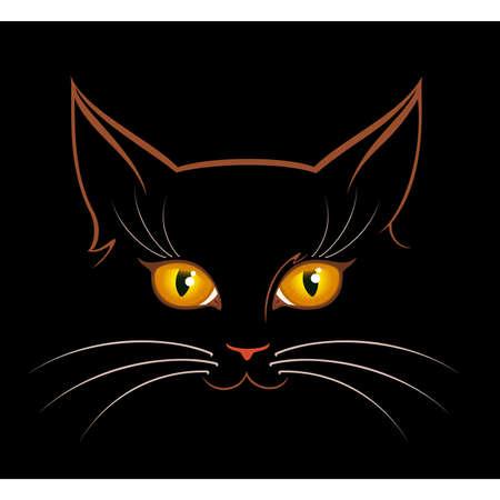 cat eyes in darkness Stock Vector - 8152124