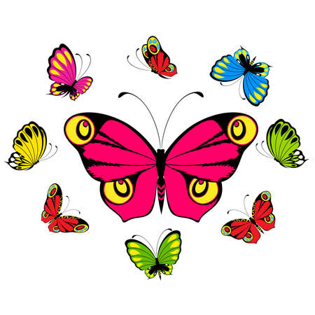 beautiful butterfly for a design Stock Vector - 8128173