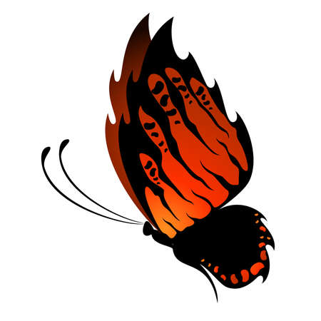 Beautiful butterfly for a design Stock Vector - 8269100