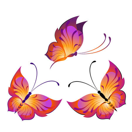 Beautiful butterfly for a design Stock Vector - 8269116