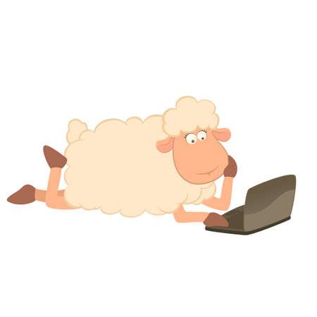 mouton cartoon: Cartoon moutons et ordinateur portable