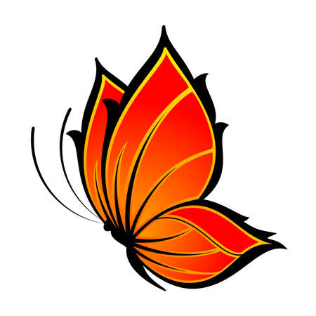 Beautiful butterfly on a white background Vector