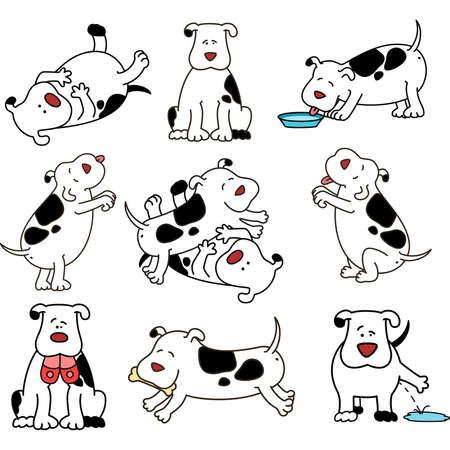 animal feed: Set of cartoon dogs Illustration