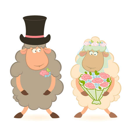 Cartoon sheep bridegroom and bride on white background. Vector