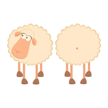 sheep cartoon: illustration of two cartoon sheep