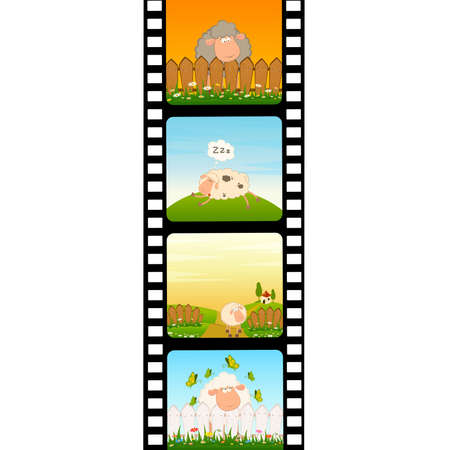 flower photos: blank film colorful strip with sheep Illustration