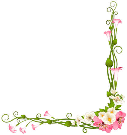 white lilly: Background with beautiful tropical lillies