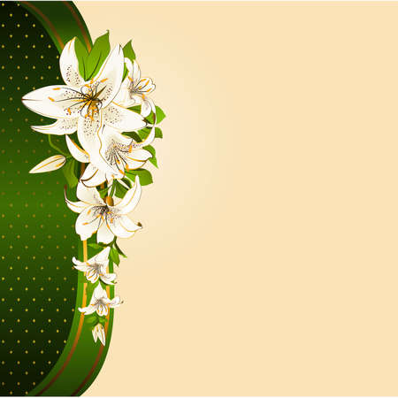 lilly: Background with beautiful tropical lillies