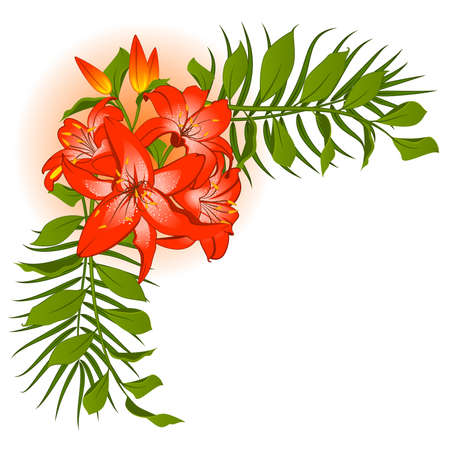 Beautiful Lily bouquet Stock Vector - 9083723