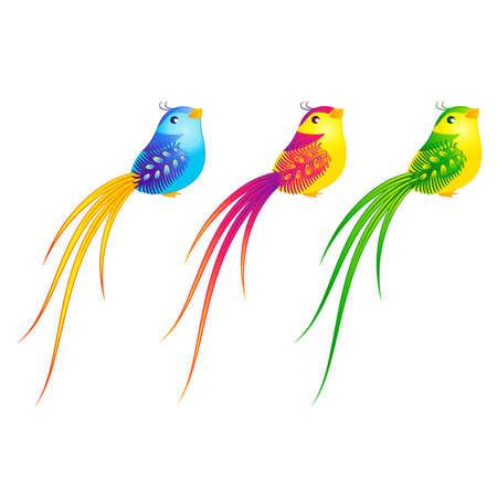 little bird: Hermosa pajarito