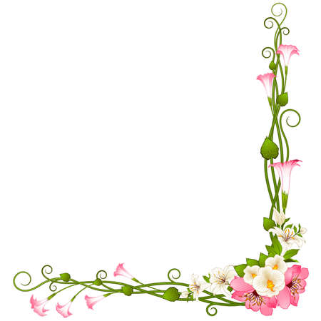 Background with beautiful orchids Stock Vector - 9029749