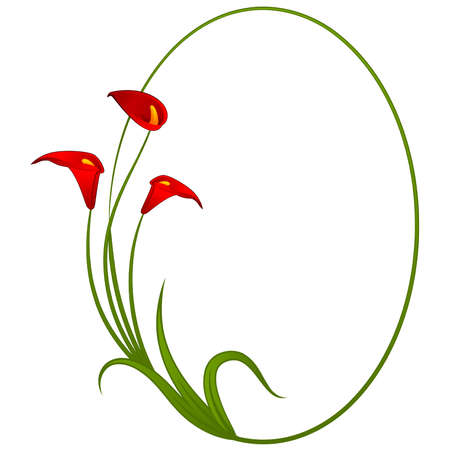 white lilly: abstract background with beautiful flowers