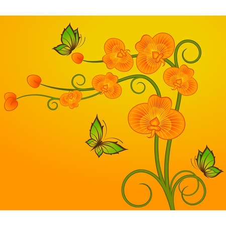 Background with beautiful orchids Vector